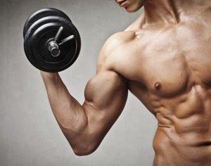 Sviluppo Muscolare Di Gambe E Tricipiti Una Volta Alla Settimana